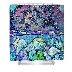 New Mexico Landscape Shower Curtain by Wayne Potrafka