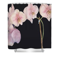 New Orchids Shower Curtain