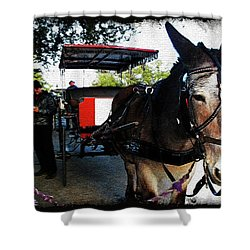 New Orleans Carriage Ride Shower Curtain by Joan  Minchak