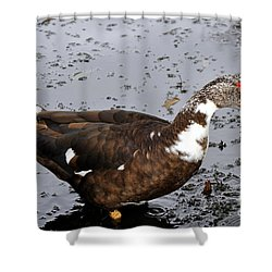 New Orleans Duck 2 Shower Curtain