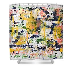 New Orleans No 2 Shower Curtain