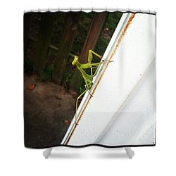 Visitor Shower Curtain