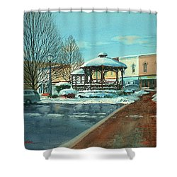 Triangle Park In Winter Shower Curtain