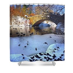 New York In The Winter Shower Curtain