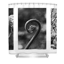 New Zealand Ferns Shower Curtain