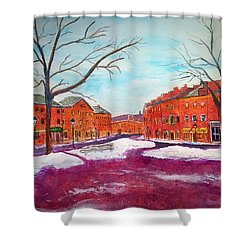Newburyport Ma In Winter Shower Curtain