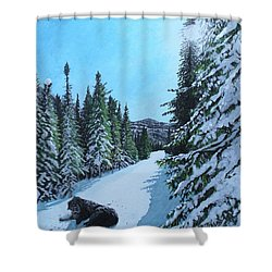 Newfoundland In Labrador II Shower Curtain