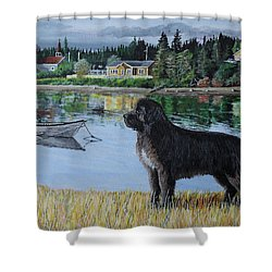 Newfoundland In Labrador Shower Curtain
