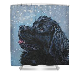 Newfoundland In Snow Shower Curtain
