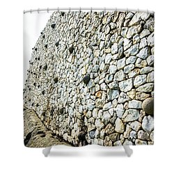 Newgrange Shower Curtain