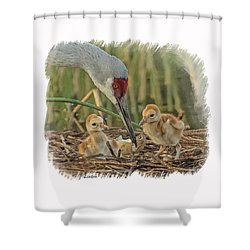 Newly Arrived Shower Curtain