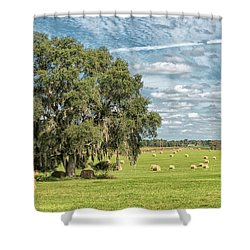 Newly Baled Hay Shower Curtain