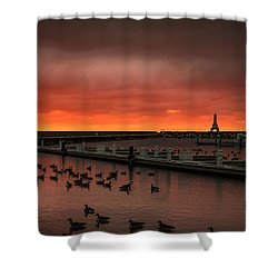 Newport Geese Shower Curtain by James Meyer