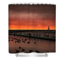 Newport Geese Shower Curtain