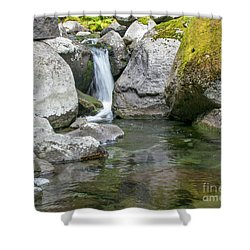 Nickel Creek 1019 Shower Curtain