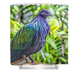 Nicobar Among Palms Shower Curtain