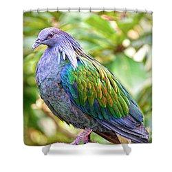 Nicobar Island Occupant Shower Curtain