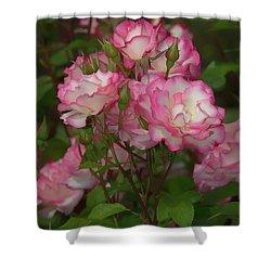 Nicole Roses Shower Curtain