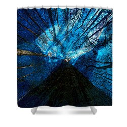 Night Angel Shower Curtain by David Lee Thompson