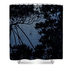 Shower Curtain featuring the photograph Night Banana Spider by Megan Dirsa-DuBois