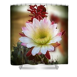 Night-blooming Cereus 2 Shower Curtain
