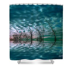 Night Dream Shower Curtain