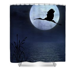 Shower Curtain featuring the photograph Night Flight by Christina Lihani