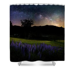 Shower Curtain featuring the photograph Night Flowers Square by Bill Wakeley