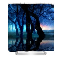 Night Fog In A City Park Shower Curtain by Francesa Miller