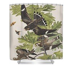 Night Hawk Shower Curtain by John James Audubon