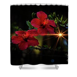 Night Hibiscus Shower Curtain by Al Bourassa