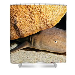 Nocturnal Hunter Shower Curtain