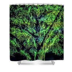 Night Moss Shower Curtain