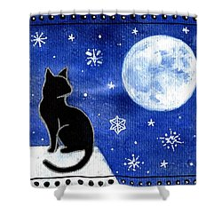 Night Patrol At Wintertime Shower Curtain