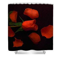Night Rose 2 Shower Curtain