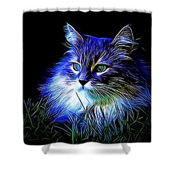 Night Stalker Shower Curtain by Kathy Kelly