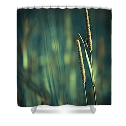 Night Whispers Shower Curtain by Aimelle