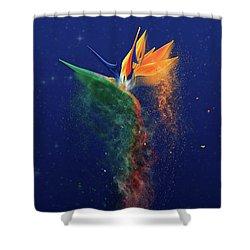 Nightbird Shower Curtain