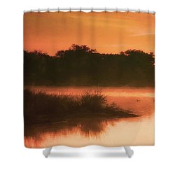 Nightfall Ducks Shower Curtain