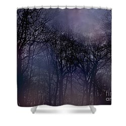 Shower Curtain featuring the photograph Nightfall In The Woods by Sandy Moulder