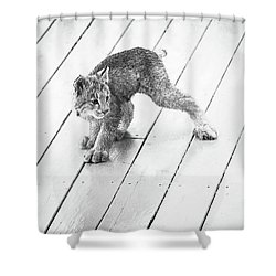 Ninja Lynx Kitty Bw Shower Curtain