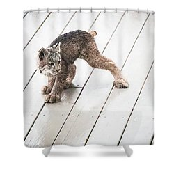 Ninja Lynx Kitty Shower Curtain