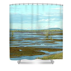 Nisqually Looking North Shower Curtain