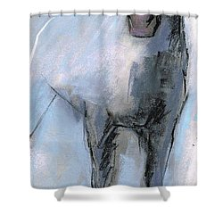 Shower Curtain featuring the drawing Nm Sketch Bw by Frances Marino