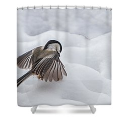 Chickadee - Wings At Work Shower Curtain