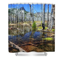 Shower Curtain featuring the photograph No Name Pond by Cat Connor