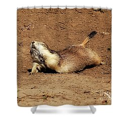 No, No Stop.  You're Killing Me.  That Joke Is Too Funny. Shower Curtain