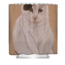 No One Sleeps Until I Do Shower Curtain by Christy Saunders Church