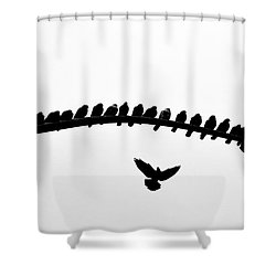 Shower Curtain featuring the photograph No Place To Land by AJ Schibig
