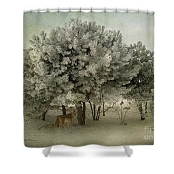 No Regrets Coyote Shower Curtain